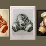 Colour photograph showing a plaster cast gestation model together with a plate and red chalk drawing by Jan van Rymsdyk from the Hunterian Collection