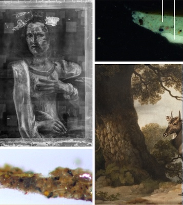 Collage of photographs illustrating the Technical Art History Group's contributions to the Take an Object exhibition at the Hungarian in 2019. The photographs show two original paintings, Saint Catherine by Guido Reni and The Nilgai by George Stubbs, together with x-ray and infrared imaging of these paintings and cross-sections of samples from these paintings that show the paint layers.